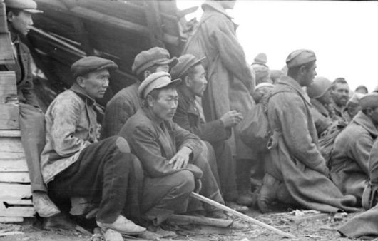 Калмыкия 1942 год