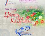 В Национальном музее откроется выставка «Цвети, моя Калмыкия!»