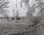 В Калмыкии сохранятся гололедно-изморозевые отложения