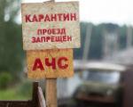 На территории Чограйского СМО снят карантин по АЧС