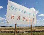 В Калмыкии зарегистрировано 15 случаев укусов клещей